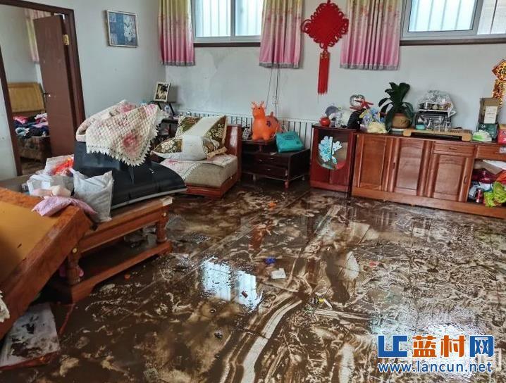 洪水过后的蓝村!小麦被泡、平房被冲垮、柏油路面被掀起