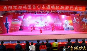韩国政府代表团到访北京少林武术学校