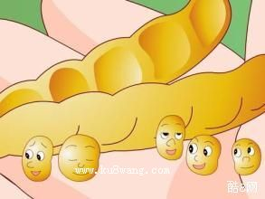 豆荚里的五粒豆