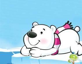还没冬眠的大肚熊