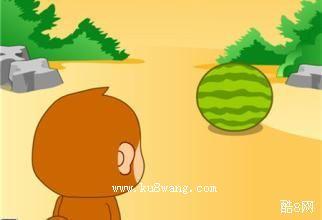 小猴子吃瓜