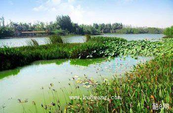白浪绿洲湿地公园