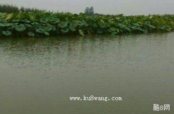 枣庄运河湿地公园