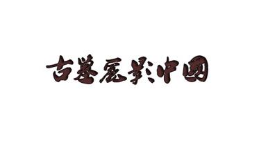 2019年度【古墓丽影】优秀文章、视频评选结果发布