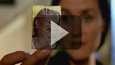 18年前真人短片《古墓丽影:三部曲》曝光