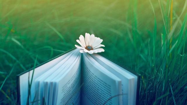 微信朋友圈唯美情感句子:爱着生活,爱着世界